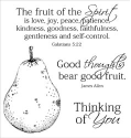 Inky Antics - Holy Spirit's Fruit - Clear Stamps