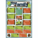 Kids Ancestry - My Roots (SKU: FYRNO-KF-10936)
