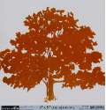 "Family Matters - Family Tree Transparency- 8""x 8"" (SKU: FYRPP-TC-4581)"