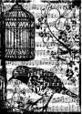 Tim Holtz - Components - Birdsong - Cling Mounted Rubber Stamps (SKU: FYRPP-TH-COM033)