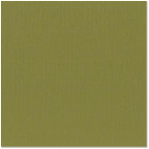 Bazzill Cardstock -  Grass Cloth - Palo Verde