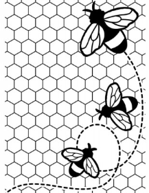 Darice Embossing Plus Folder - Bees Buzzing