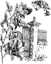 Lablanche Silicone Stamp - Fence with Roses