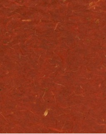 "Rust with Banana Bark 8.5"" x 11"""
