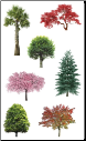 Mrs. Grossman's - The Family Tree Stickers