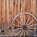 McRice Photo Papers - Wagon Wheel