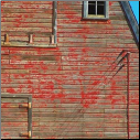 McRice Photo Papers - Barn
