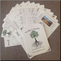 "Genealogy Chart Collection A - 8.5"" X 11"""